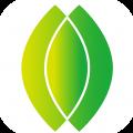 树叶App