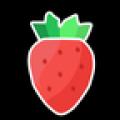 草莓聊天约会